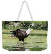 Bald Eagle's Look Weekender Tote Bag