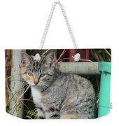 Barn Cat Weekender Tote Bag by Ann E Robson