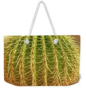 Barrel Cactus Royal Palms Phoenix Weekender Tote Bag