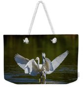 Battle On The Pond Weekender Tote Bag