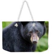 Bear Stare Weekender Tote Bag