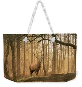 Beautiful Landscape Image Of Still Stream In Lake District Fores Weekender Tote Bag