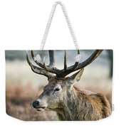 Beautiful Red Deer Stag Cervus Elaphus With Majestic Antelrs In  Weekender Tote Bag