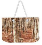 Beech Forest Weekender Tote Bag