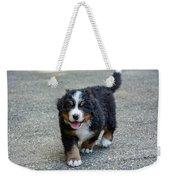 Bernese Mountain Dog Puppy 2 Weekender Tote Bag