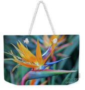 Bird Of Paradise Flowers Weekender Tote Bag