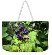 Black Raspberries  Weekender Tote Bag