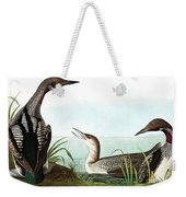 Black Throated Diver, Colymbus Arcticus By Audubon Weekender Tote Bag