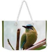 Blue-crowned Motmot Weekender Tote Bag