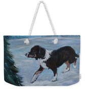 Border Collie In The Snow Painting By Saga Sabin