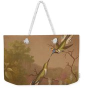 Brazilian Hummingbirds II Weekender Tote Bag