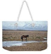 Brown Icelandic Horse In Profile Near Stream Weekender Tote Bag