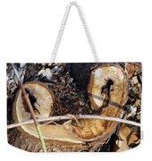 Canal Stumps-017 Weekender Tote Bag