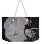 Canal Stumps-026 Weekender Tote Bag