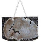 Canal Stumps-058 Weekender Tote Bag