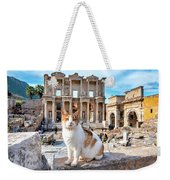 Cat In Front Of The Library Of Celsus Weekender Tote Bag