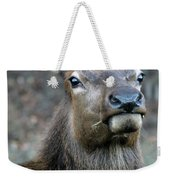 Caught With A Mouthful Weekender Tote Bag