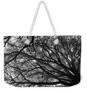 Cedars In The Mist Weekender Tote Bag