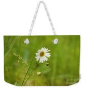 Chamomile Or Daisy? Weekender Tote Bag