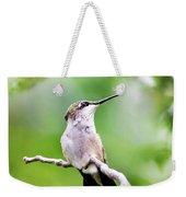 Charming Hummingbird Square Weekender Tote Bag