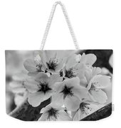 Cherry Blossoms 2019 E Weekender Tote Bag