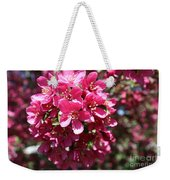 Cherry Blossoms 2019 Iv Weekender Tote Bag