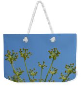 Close Up Of Fennel Flowers. On Sky Background Weekender Tote Bag
