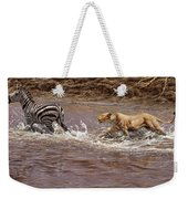 Closing In - Lion Chasing A Zebra Weekender Tote Bag by Alan M Hunt