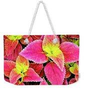 Coleus Colorfulius Weekender Tote Bag