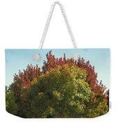 Colors Of The Neighborhood 25 Weekender Tote Bag