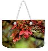 Colours Turning Weekender Tote Bag