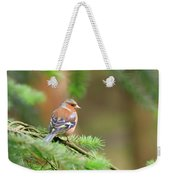 Common Chaffinch Fringilla Coelebs Weekender Tote Bag