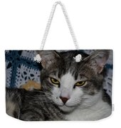 Content Cat Weekender Tote Bag