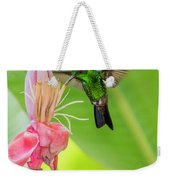 Copper Rumped Hummingbird Feeds On A Banana Flower Weekender Tote Bag by Rachel Lee Young