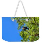 Costa Rica Capuchin Momma And Baby Aboard Weekender Tote Bag