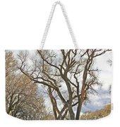 Cottonwood Az Bayou Leafless Tree Sky Clouds Path 31262019  Weekender Tote Bag