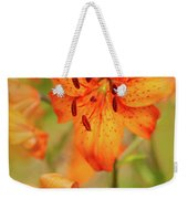 Could These Be Tiger Babies? Weekender Tote Bag