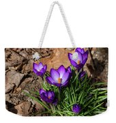 Crocus In Spring 2019 I Weekender Tote Bag