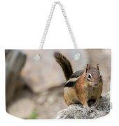 Curious Chipmunk Weekender Tote Bag