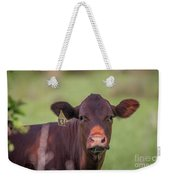 Curious Cow #636 Weekender Tote Bag by Tom Claud