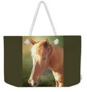 Cute Chestnut Pony Weekender Tote Bag