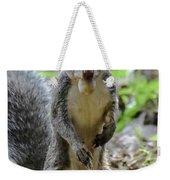 Cute Squirrel Weekender Tote Bag