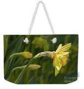Daffodil In Sun Weekender Tote Bag