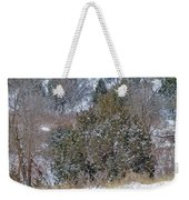 Dakota West In Winter Weekender Tote Bag