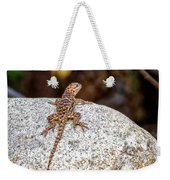 Desert Spiny Lizard H1809 Weekender Tote Bag by Mark Myhaver