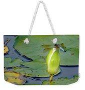 Dragonfly On Liliy Bud Weekender Tote Bag by PJ Boylan