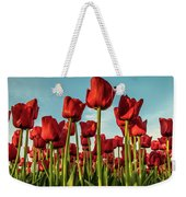 Dutch Red Tulip Field. Weekender Tote Bag