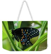 Eastern Black Swallowtail - Closed Wings Weekender Tote Bag