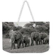 Elephant Herd Weekender Tote Bag