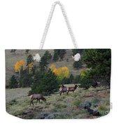 Elk - 1964 Weekender Tote Bag